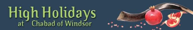 web-banner2.jpg