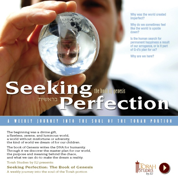 SeekingPerfection-Email.jpg