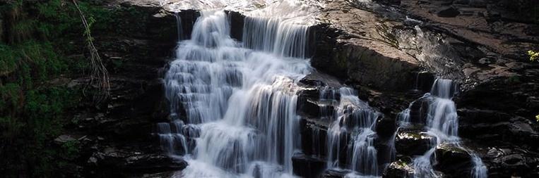 spring-water-.jpg