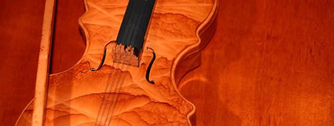 Nos chroniqueurs sur la Paracha: La musique, le langage de l'âme