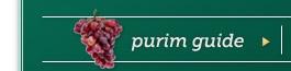purim-site-photos_05.jpg