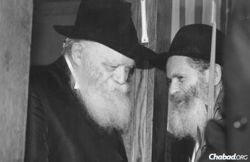 In 1987, Reb Boruch Mordechai Lifshitz, right—or Mottel der Shoichet, as he was affectionately known—received a lulav and etrog set for the holiday of Sukkot as a gift from the Rebbe.