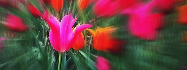 """One In Focus - By <a href=""""/k15995"""">Michoel Ogince</a>"""