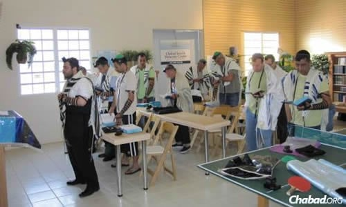 Federman leads the morning minyan (prayer service) at Chabad of St. Thomas.
