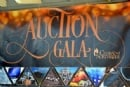 Auction Gala 2015