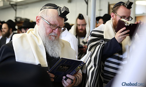 Gimmel Tammuz is a day of prayer and study, soaking in the words and wisdom of the Rebbe. (Photo: Chaim Perl)