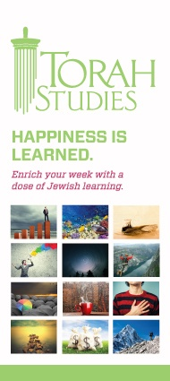 Torah Studies - Young Adult Chabad