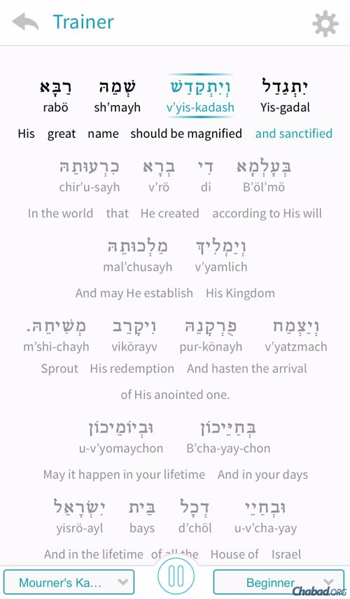 The centerpiece of the new app is the audio-visual trainer that assists students by highlighting each word—in Hebrew characters, transliteration and translation—as it is chanted aloud in a clear, easy-to-follow voice.