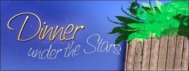 Sukkah stars.jpg