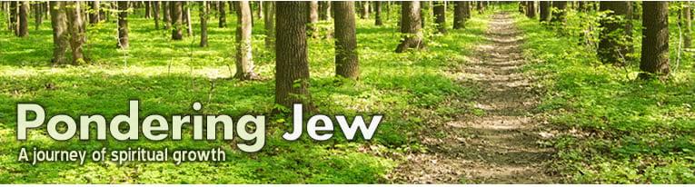 Pondering Jew