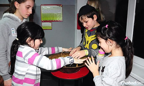 Kids experiment with exhibits at the science museum.