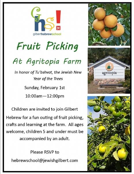 fruit picking at agritopia.jpg