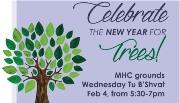 Chamisha Asar Bishvat (New Year of Trees)