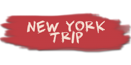 ny trip button.png