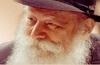 Rebbe's Reach