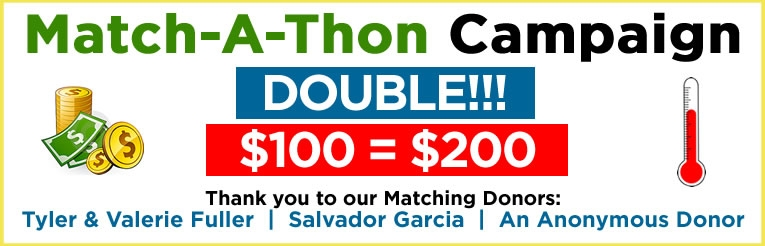 campaign_banner_765_teldon.jpg