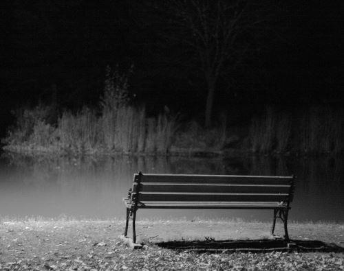 ''בודד''. צילום: Ragesoss, ויקיפדיה