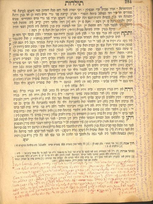 דף מספר הזוהר של רבי לוי יצחק, עליו כתב את חידושיו. שימו לב לצבעים השונים של הכתב - בהתאם לעשבים מהם הפיקה הרבנית את הדיו