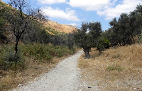 The old road from Rosh Pina to Safed.