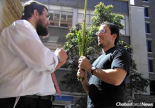 Dean Kaplan shakes the lulav during Sukkot with Rabbi Eli Feldman, co-director of Young Adult Chabad in Bondi with his wife, Elka Malka.
