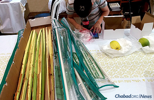 Getting ready for the week-long holiday of Sukkot, which begins on the evening of Sept. 27, at the Nachalat Yaakov Synagogue in Jerusalem. (Photo: Sarah Leah Lawent)