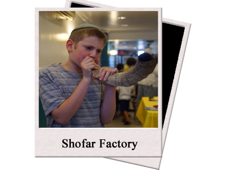 web shofar copy.jpg