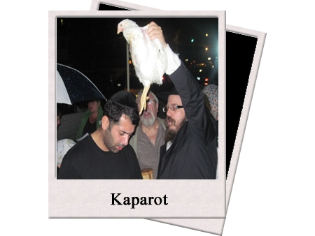Kaparot copy.jpg