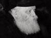 Promoting Torah