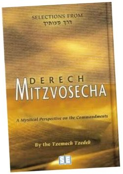 Selections of Derech Mitzvotecha were rendered by Rabbi Eliyahu Touger into English and published by Sichos in English in 2004.