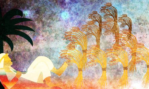 Ilustração de Sefira Ross
