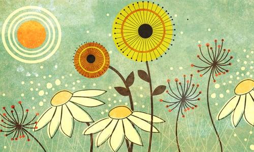 10 Frases Sobre Cultivar A Gratidão Vida E Sociedade