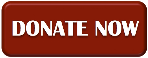 Donate-Now-Button.jpg