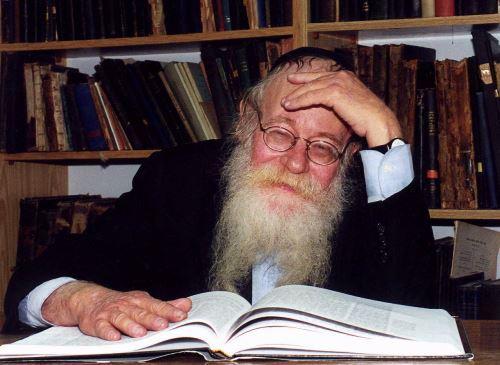 הרב עדין אבן ישראל (שטיינזלץ)