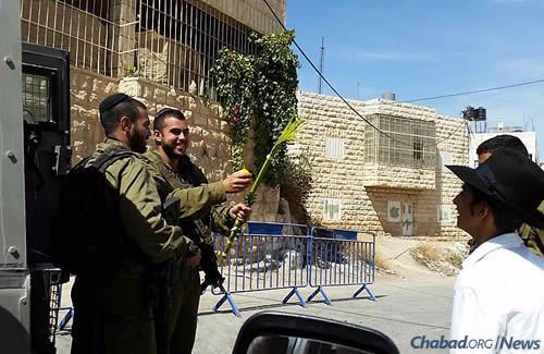 Providing soldiers with the opportuity to shake the lulav and the etrog during Sukkot.