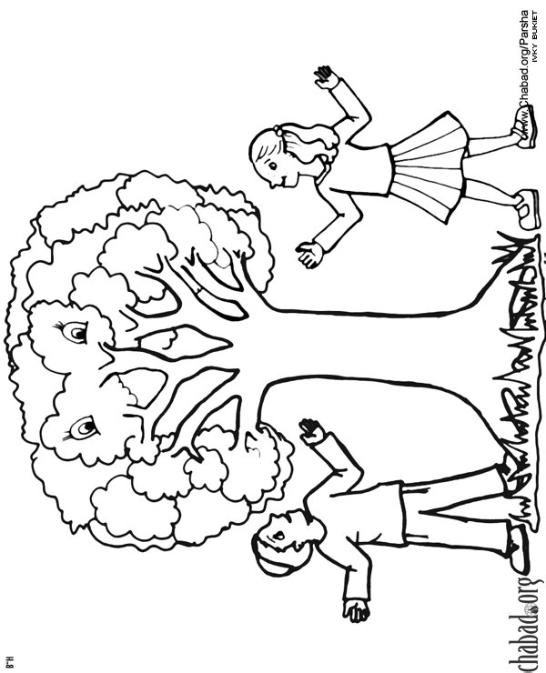 Tu B Shevat Coloring Pages The 15th Of Shevat Jewish Kids