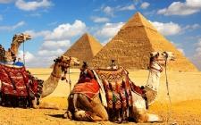 Египет-пожизненный срок.jpg