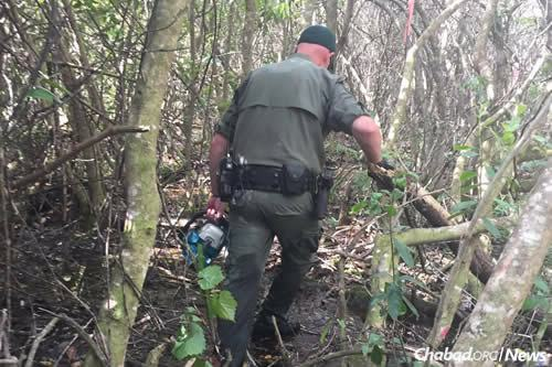 The thickly forested swampland was difficult for search-and-rescue workers.