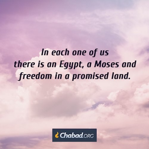The inside story on passover daily dose of wisdom in each one of us there is an egypt and a pharaoh and a moses and freedom in a promised land and every point in time is an opportunity for another exodus m4hsunfo