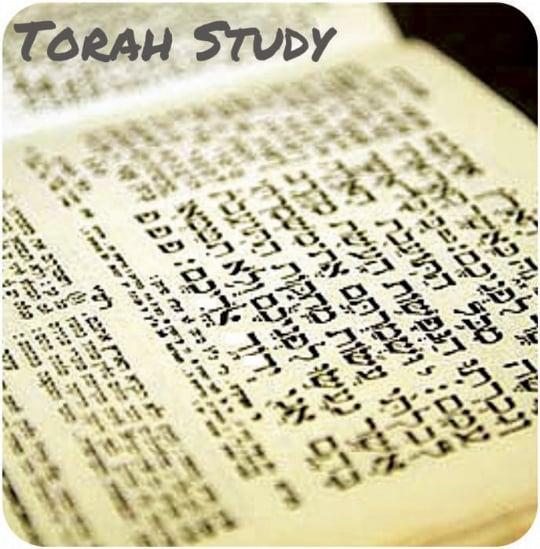 Torah Study.jpg