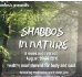 2016 Shabbos Retreat in Nature