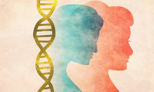 Can a DNA Test Determine Jewish Status? - Questions & Answers