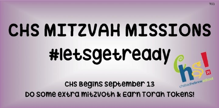 chs mitzvah missions summertime.jpg