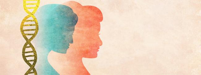 Can a DNA Test Determine Jewish Status?