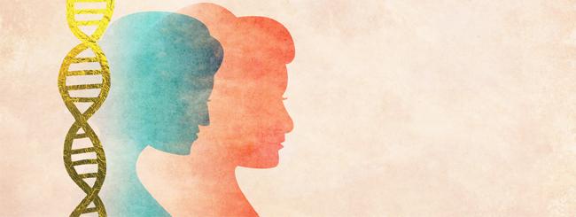 Paracha Focus: Pourquoi Bilhah et Zilpa ne sont-elles pas considérées comme des matriarches juives?