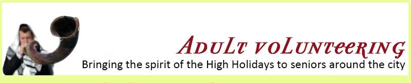 adult-volunteering-banner.jpg