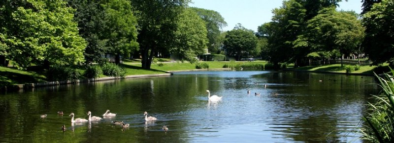 east-hampton-town-pond.jpg
