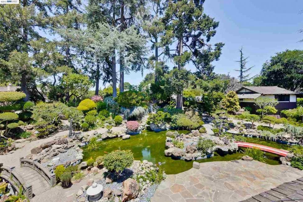 Garden-and-Pond.jpg