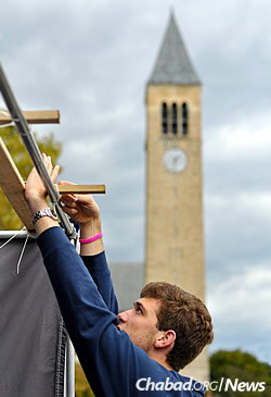 Putting up a sukkah on campus (Photo: Chabad on Campus International)