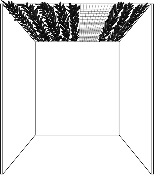 Fig. 18: Here, the invalid material is less than four tefachim wide and covers less than half of the area of the sukkah. This sukkah is thus valid. See sec. 631:10.