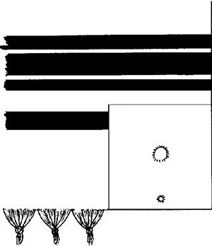 Fig. 5: Corner of tallis gadol (See sec. 11:18 and 11:34.)